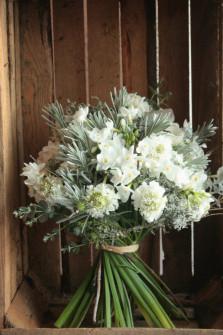Narcisses et scabieuses. Fleuriste Toulouse ©Gali M