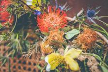 fleuriste toulouse